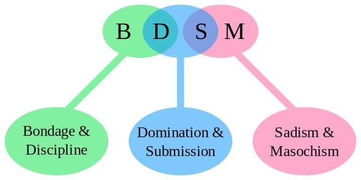 Define Bdsm 7